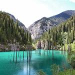 Невероятные снимки природы БЕЗ применения фотошопа