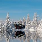 Если вы не любите зиму, просто взгляните на эти фотографии. Возможно, они изменят ваше отношение…