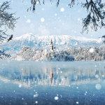 20 замечательных фотографий зимних пейзажей