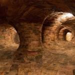 Гигантские корнеобразные туннели из переработанного дерева — их можно рассмотреть изнутри!