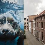 Cобака на улицах Бельгии, определённо любящая нырять!